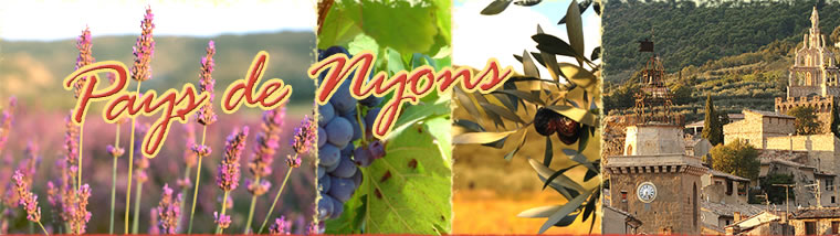 logo office du tourisme Nyons